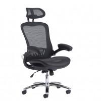 Curva Ergonomic High Back Mesh Chair