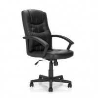 Darwin Faux Leather Executive Armchair