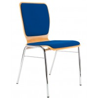Wing II Conference Chair