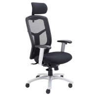 Fonz 24 Hour Mesh Office Chair